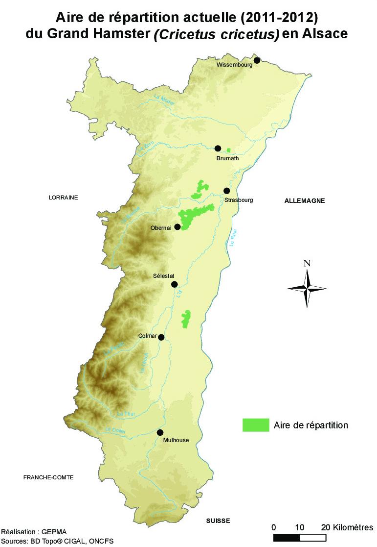 Carte de répartition du Grand Hamster en Alsace