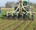 Strip-till and plant cover trials