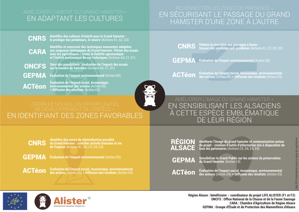 infographie alister