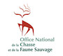 office_chasse