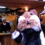 Alister au marché de Noël -
