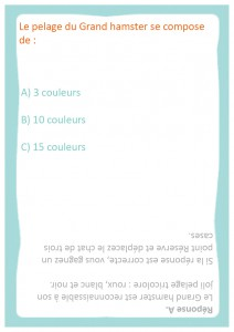 questions faciles 11