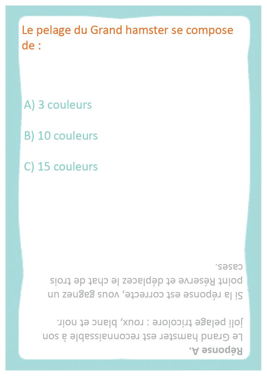 questions faciles 11