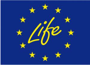 Life europe