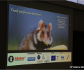A thesis opening up several roads on the survival of the European Hamster in Alsace