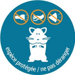 espèce protégée